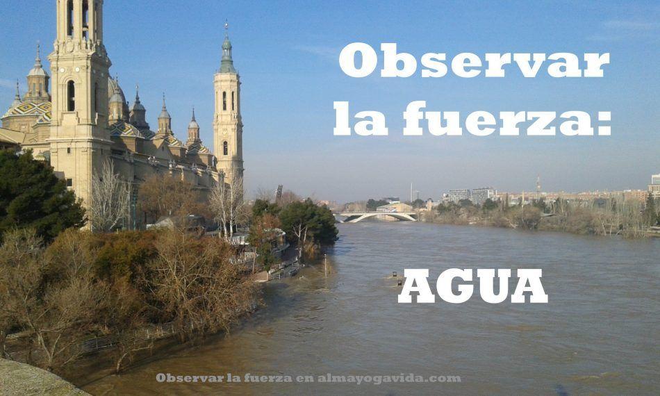 Observar la fuerza agua en almayogavida.com