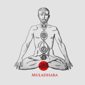 Muladhara chakra en almayogavida.com