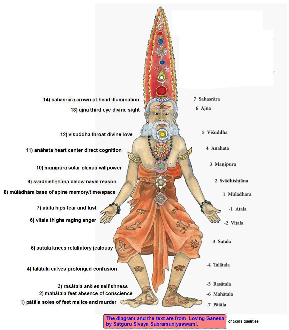 Sistema chakral en almayogavida.com